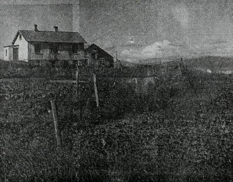 Svidholt 1967
