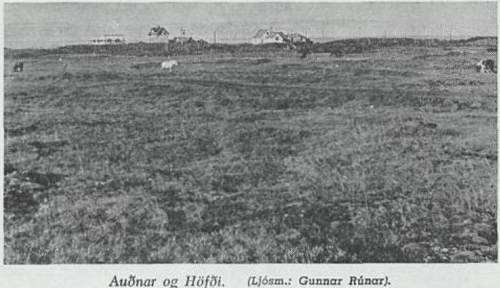 Hofdi og Audnar