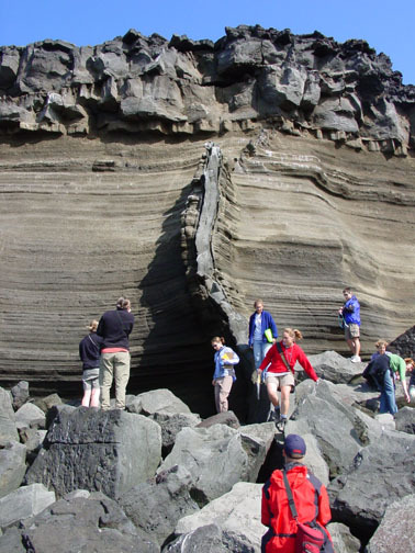 Berggangur a reykjanesi