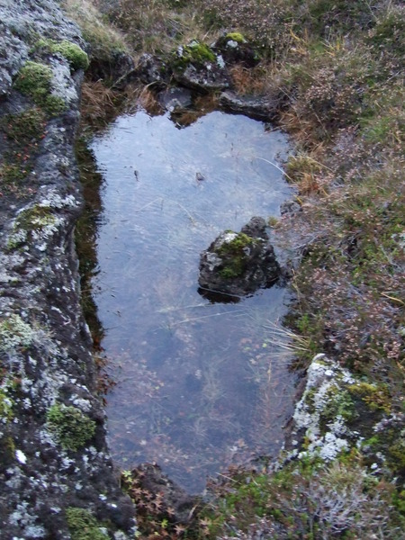 Vatnsstæði við Breiðagerðisstíg
