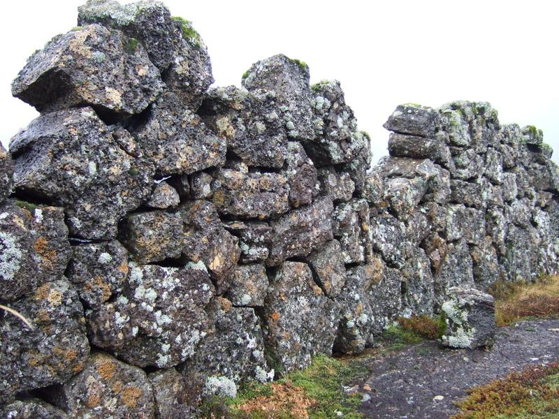 Veggur í Brúsastaðaréttinni