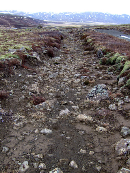 Leifar af gamla akveginum milli Selkots og Brúsastaða