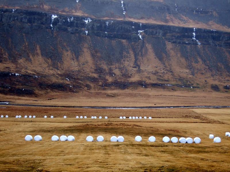 Bæjarhóll Þorbrandsstaða
