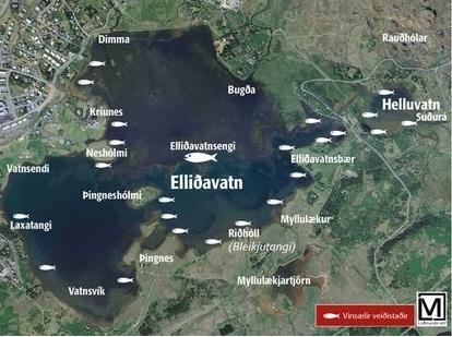 Elliðavatn - mynd Ísl.vefurinn