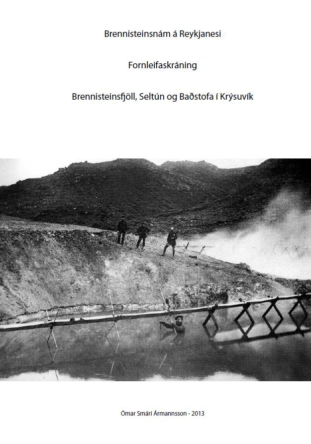 brennisteinsnam-221