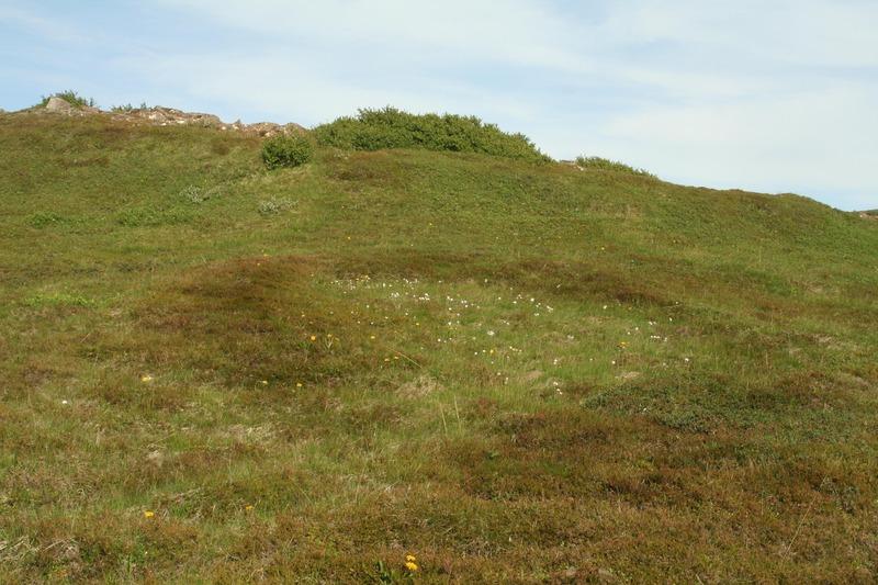Tóft við Garðaflatir