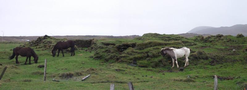 Bæjarhóll gamla Hóps