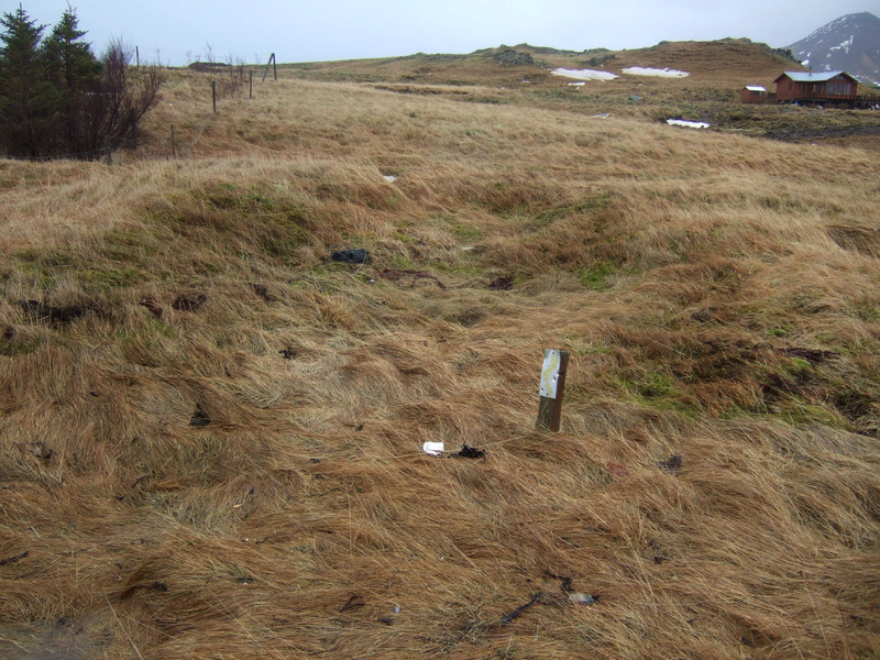 Búðartóft á Búðasandi - í Hálsbúðum