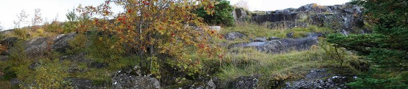 Á norðanverðum Hamrinum
