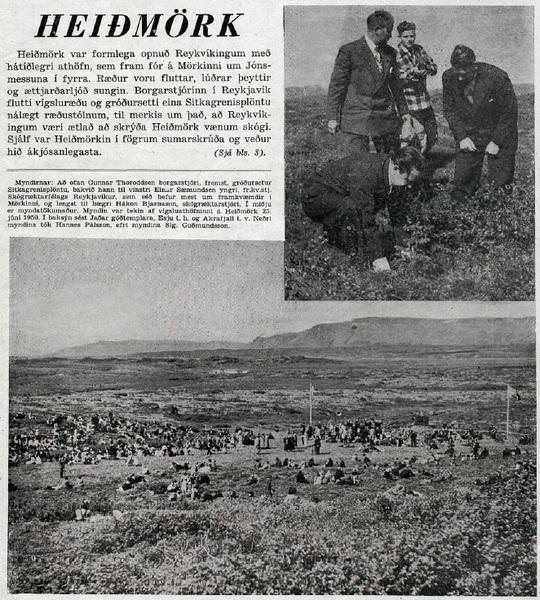heidmork-222