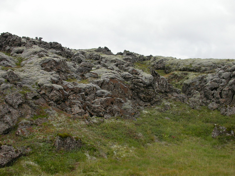Mosadauði