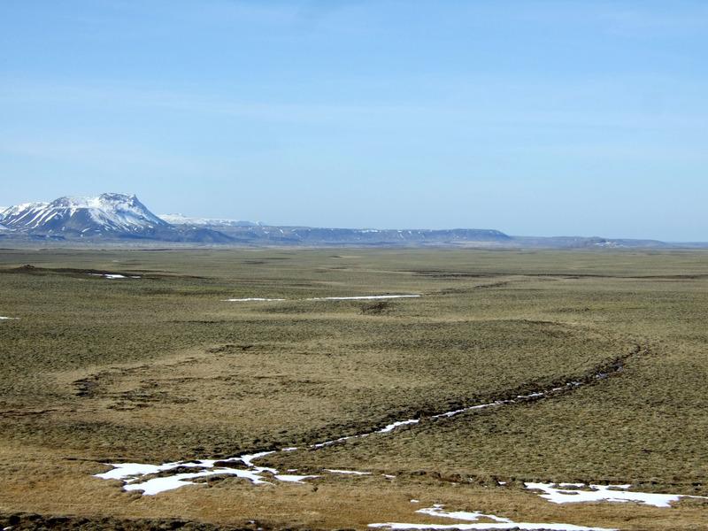 Dyravegurinn á Mosfellsheiði