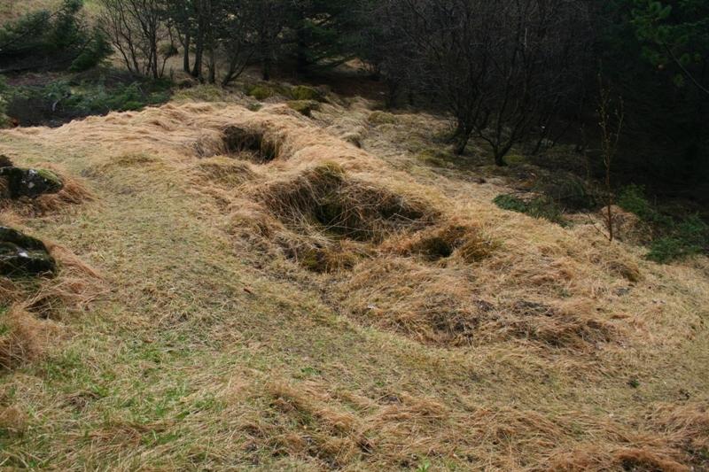 Hlíðarhúsasel
