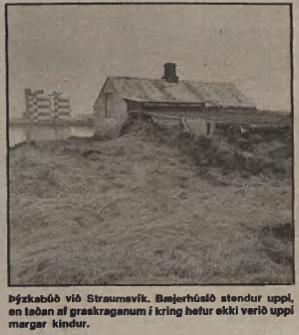 Þyskabud-803