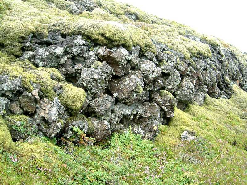 Forn garður við Gömlu-Krýsuvík