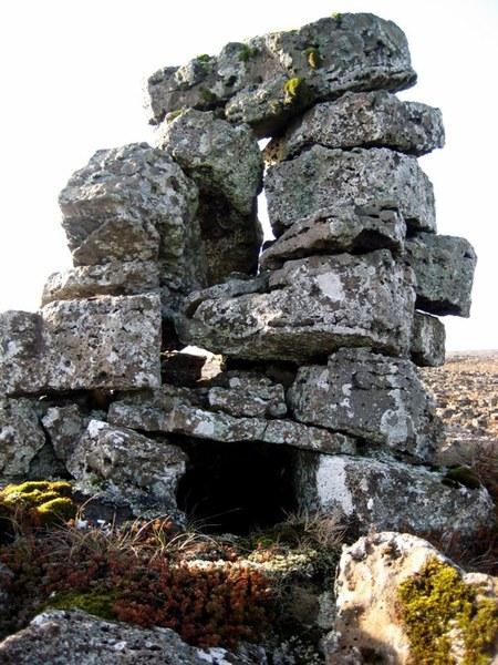 Refagildra ofan við Tóftir -4