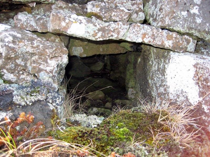 Refagildra ofan við Tóftir - 5