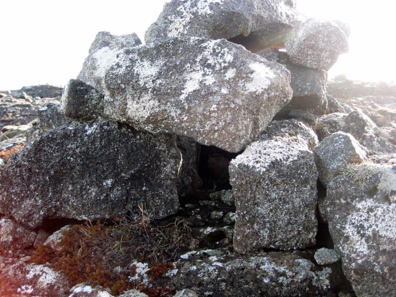 Refagildra ofan við Tóftir - 3