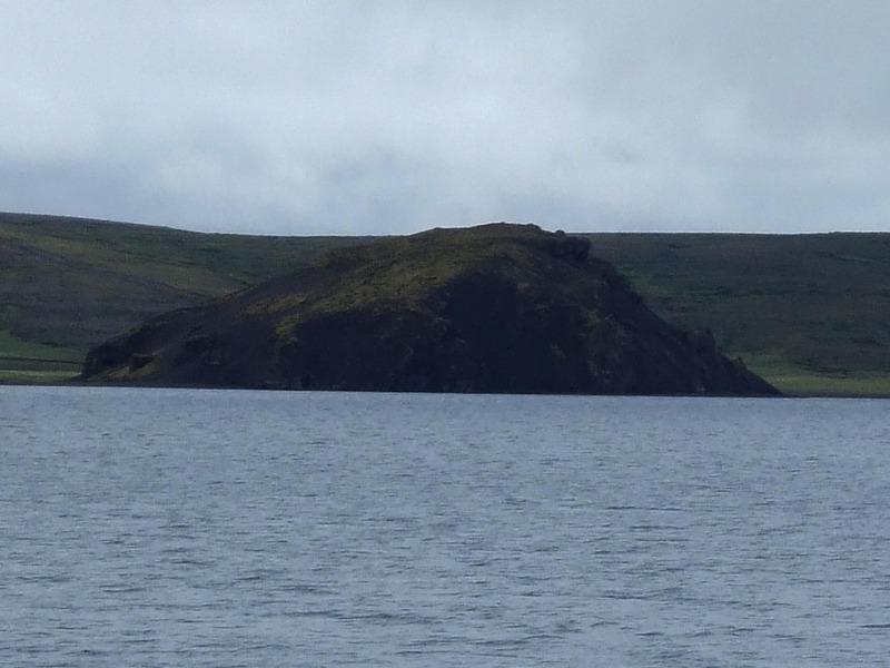 Skinnhúfuhöfði
