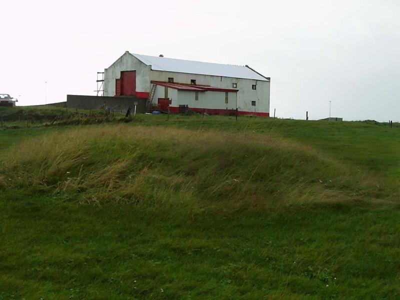 Dys við Garðshús í Grindavík