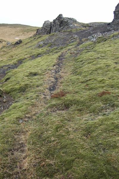 Gata austan við Arnarvatn