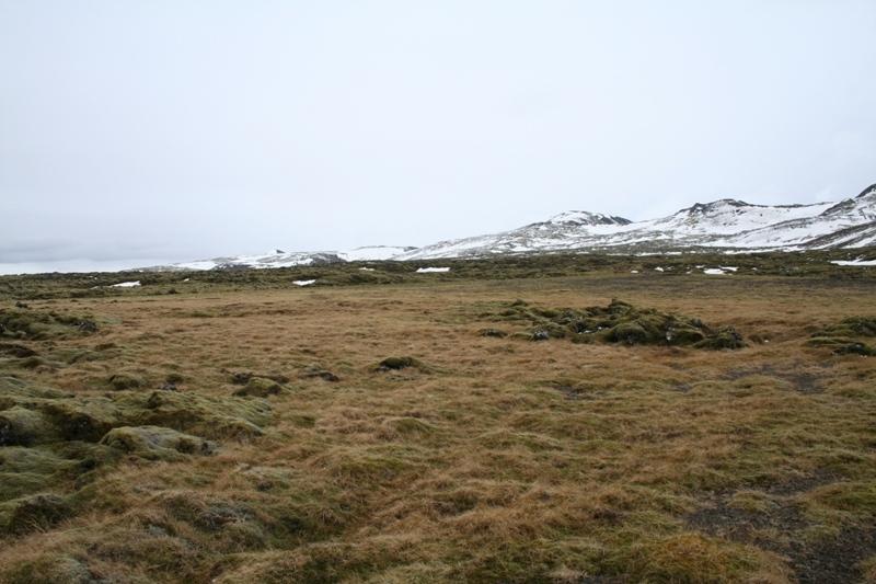Lönguhlíðahvammur