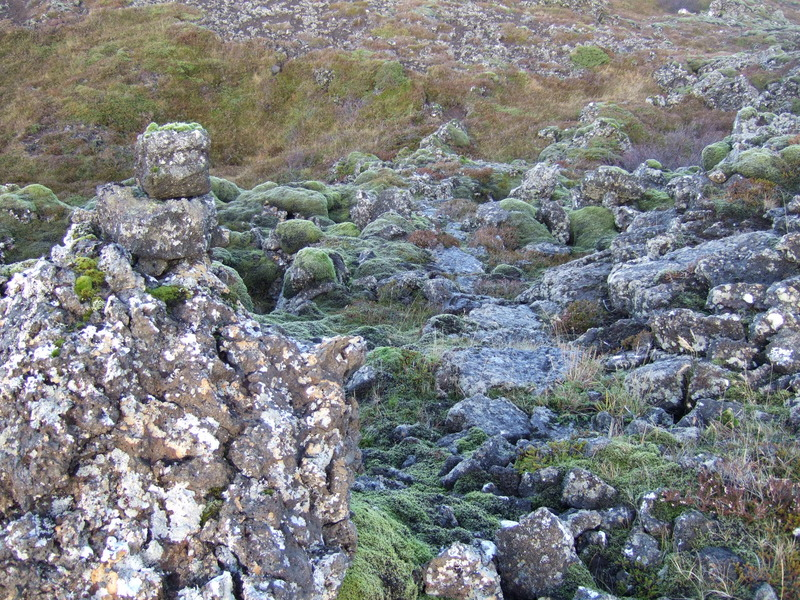 Flóraður stígur um Stóru-Aragjá