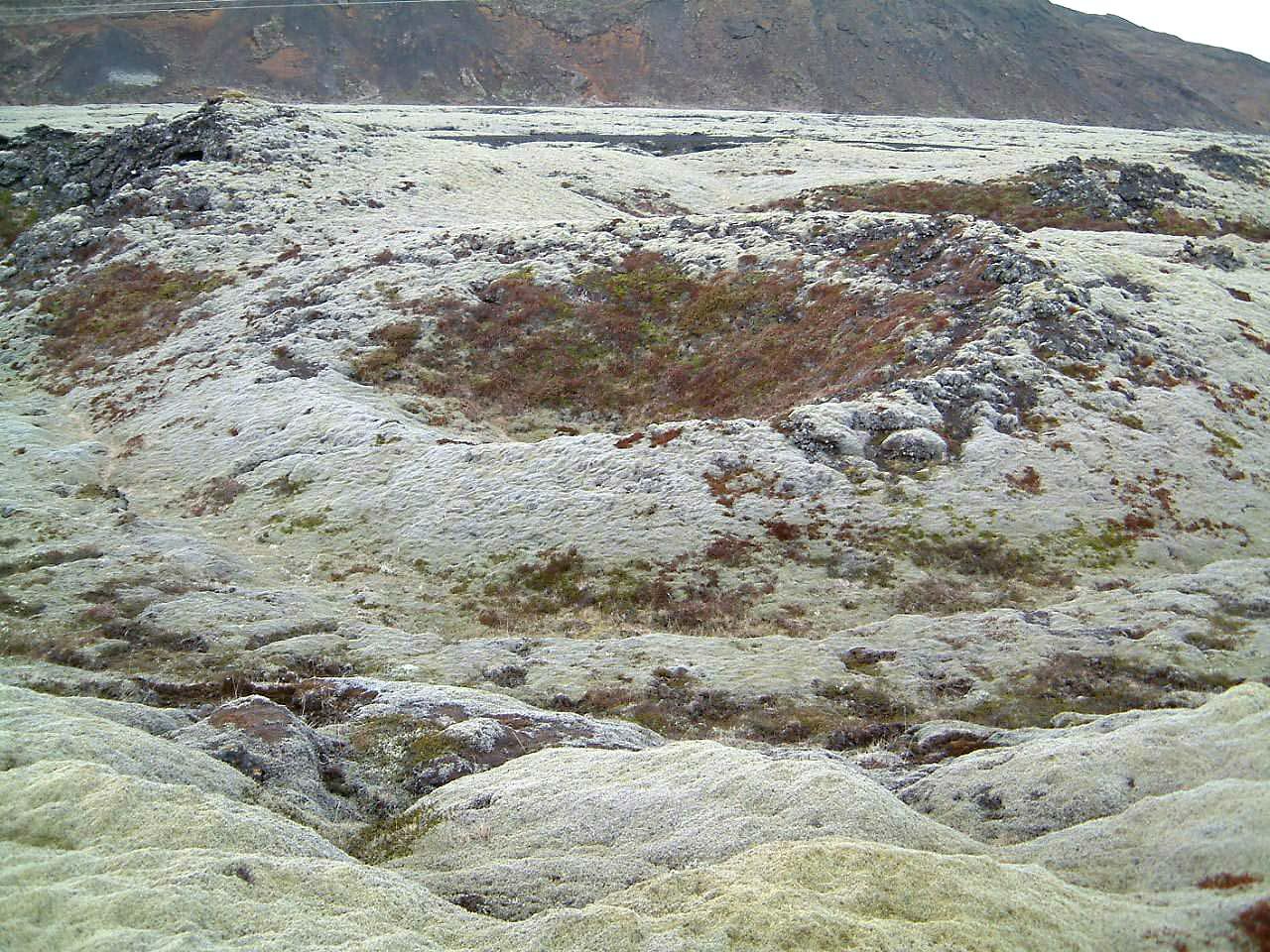 Gervigígur við Litluborgir