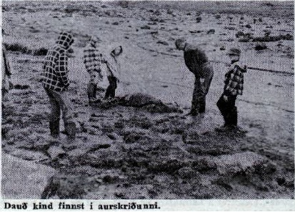 Melaseljadalur-1966-3