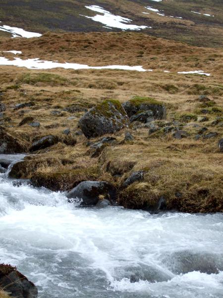 Möðruvallasel í Trönudal