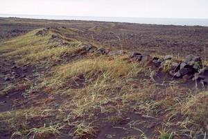 vörslugarður