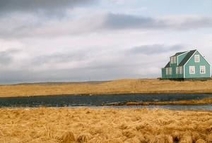 Sáðgerði