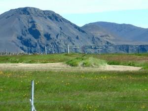 Þórkötludys
