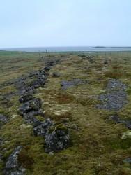 Garðar