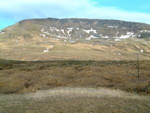 Þerneyjarsel
