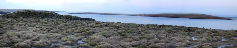 Niðurkot - Þerney fjær