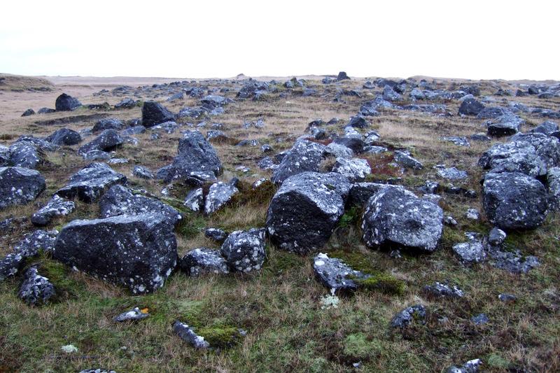 Norður-Nesjar