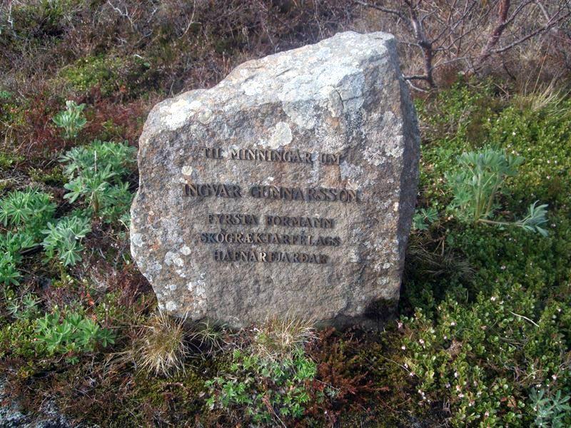 Ingvarslundur-221