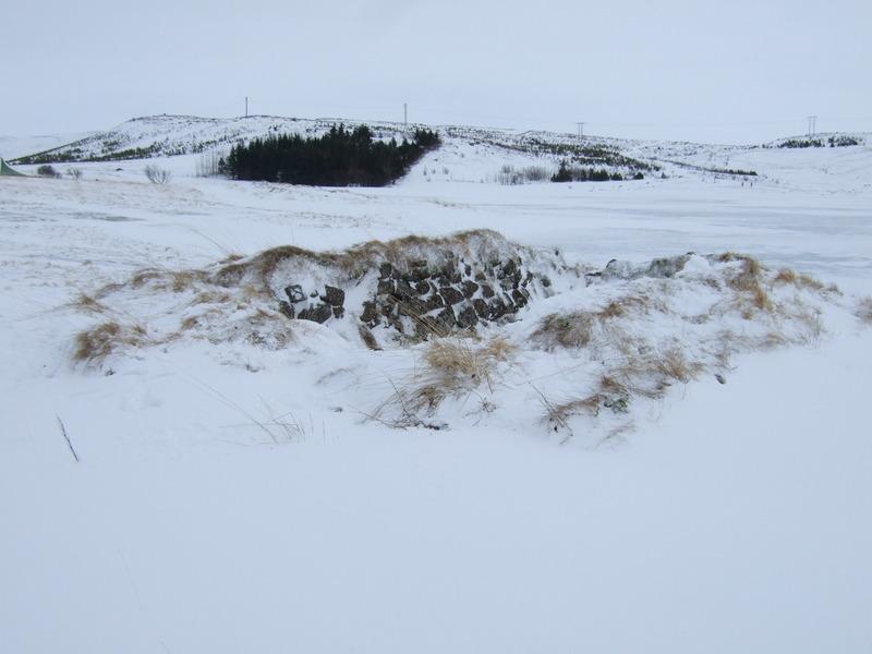 Tóft vestan við Reynisvatn