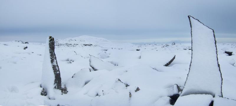 Uppréttar hraunhellur við Sandakraveg - Stóra Skgógfell framundan