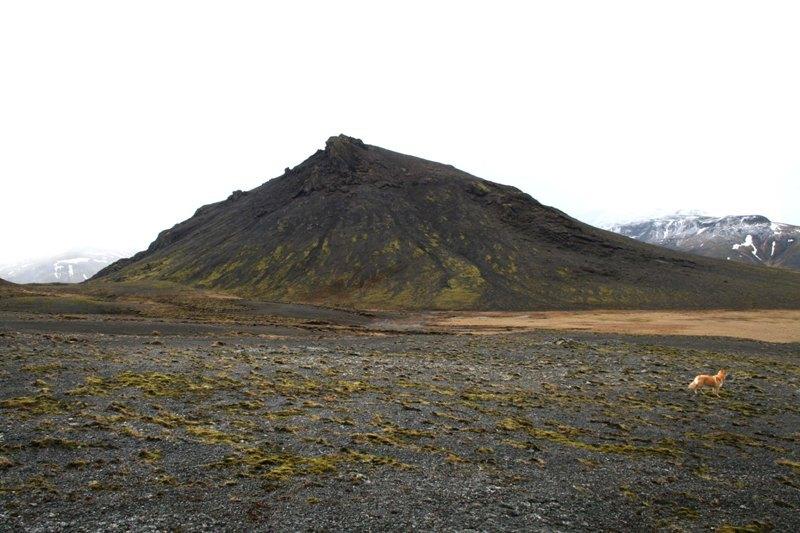 Sandfell