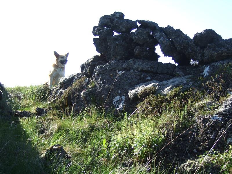 Hleðsla í Rauðamelssklettsréttinni efri