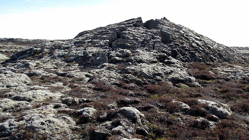 Selhraunsholl