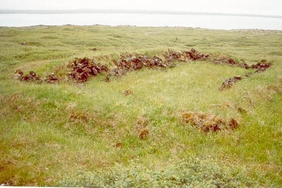 Fjárhús frá Stakkavík
