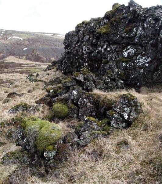 Selsvallasel við geitafell