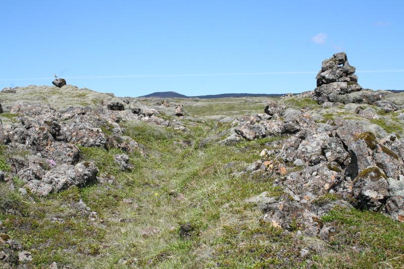 Selvogsgata ofan Hlíðardals