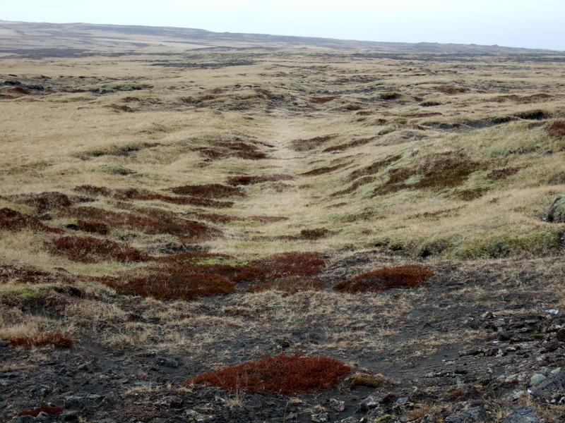 Fornagata í Miðheiðinni