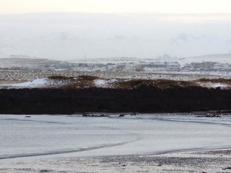 Horft á Skansinn yfir Dugguós - að fundarstaðnum