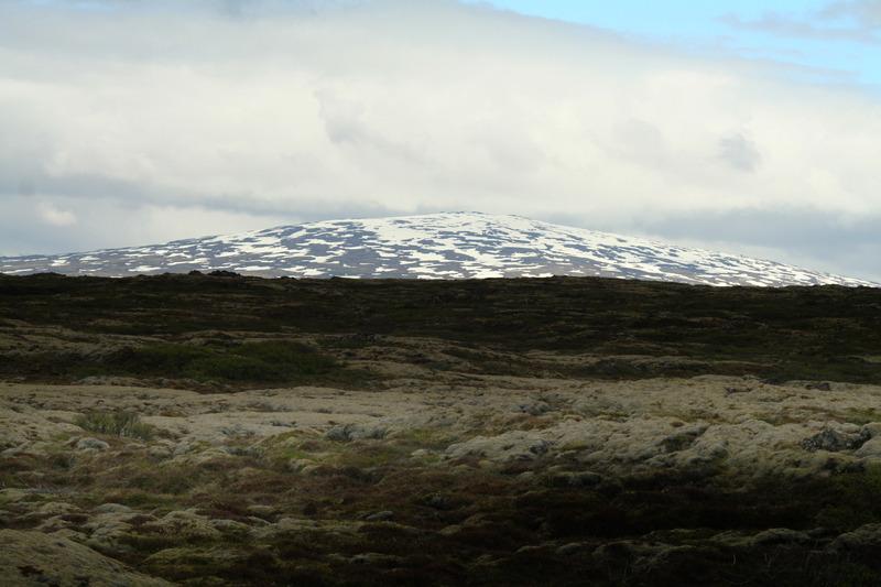 Skjalbreiður