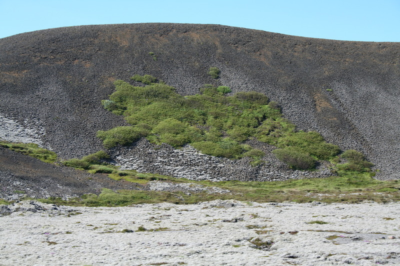 Litla-Skógfell